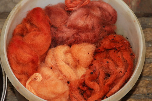 Natural Dyeing Days