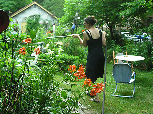 Jane watering the garden while Dennis is away...