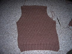 wool vest back