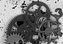 B&W gears