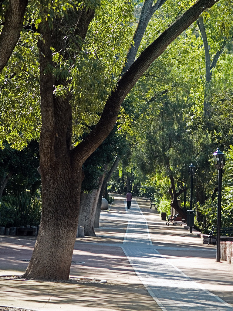 Walkway in Parque Jaurez