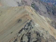 Goats on SW Ridge of Tieton Peak