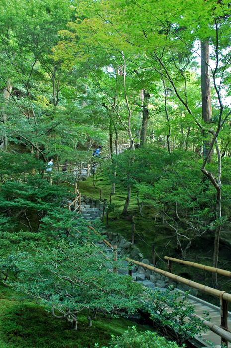 隱身林中的禪風步道