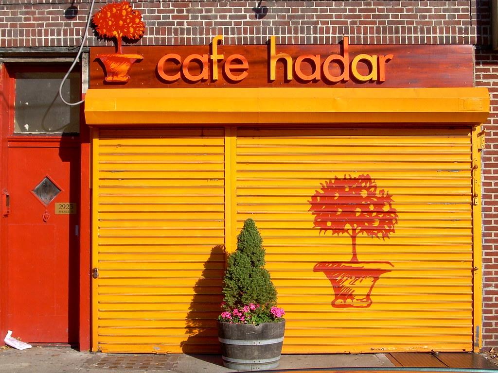 cafe hadar, midwood