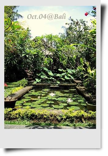 Bali-043