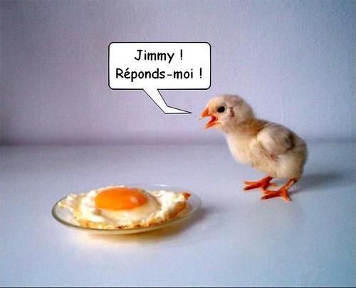 Jimmy!!