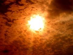 Sun Is In The Sky