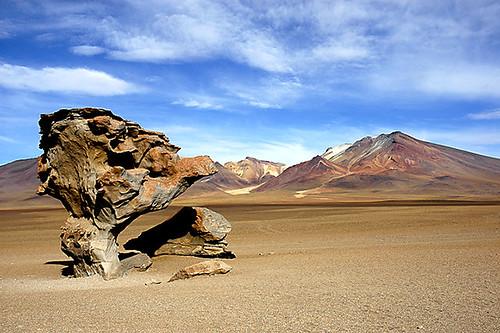 مناظر خلابة لبحيرة الملح ببوليفيا 304076986_54fb9557a8