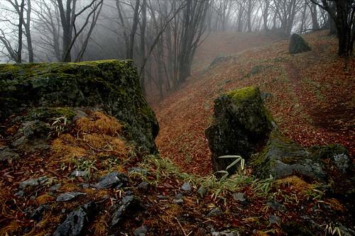 Okutama Rocks