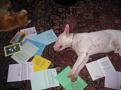Herbie & I wz Xmas cards