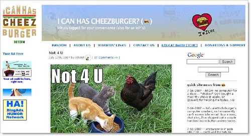 i can has cheezburger (by Dosh Dosh)