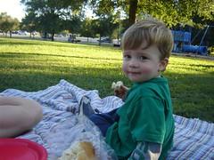 picnic pose