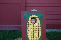 A big corn!
