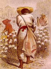 Cotton Worker
