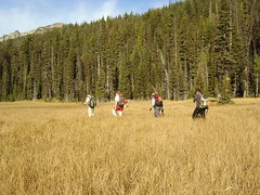The Group in One of the Lower Meadows