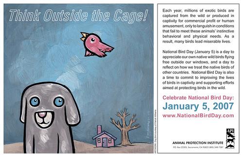 API - National Bird Day (January 5, 2007)
