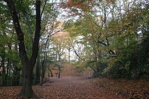 千秋公園中的步道