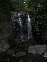 Waterfall in the lemington national park