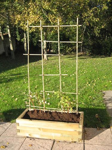 du japon dans un jardin une grille tuteur en bambous. Black Bedroom Furniture Sets. Home Design Ideas