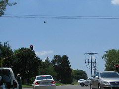 The shoes in the intersection, travelling towards Sandton