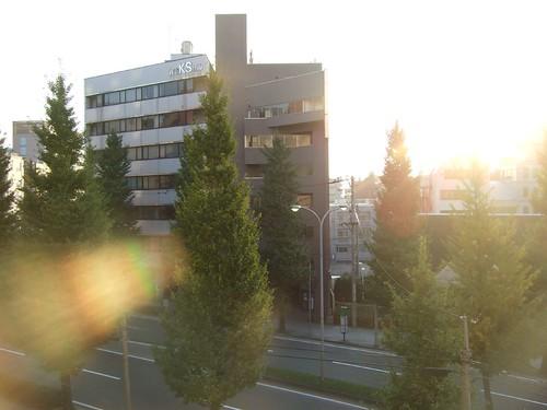 第五天的晨景