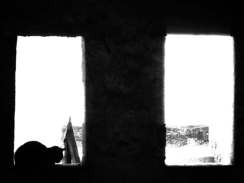 en-la-ventana-BN