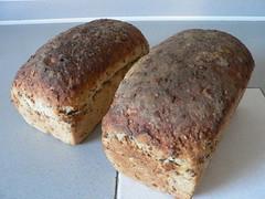 Sourdough Seed Bread 010