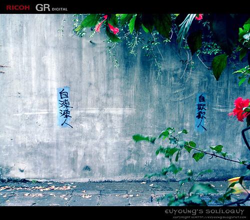 R0010843_crop.jpg