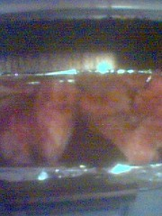 三文魚頭2-烤熟前