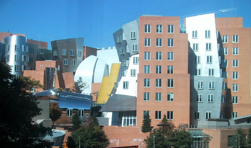Stata, as seen from Bldg 66