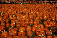 Even more pumpkins