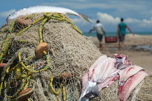 pescadores en el pueblo de Camarones