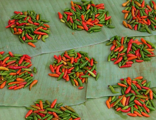 Hot Stuff - Luang Prabang