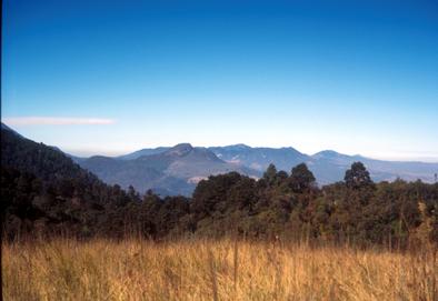 Guatemala hills