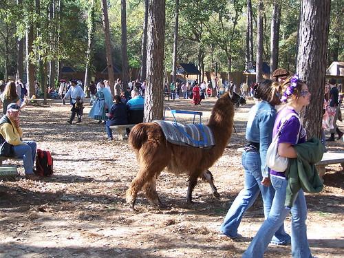 2006 - 11-18 - Renaissance Festival 027