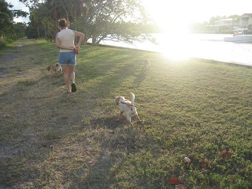 patty walkin', the sun settin'