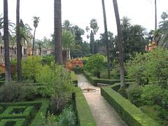 5451f Alcazar garden