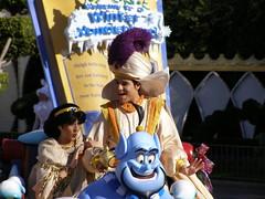 Disneyland in December (19)