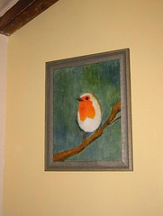 Robin on the wall