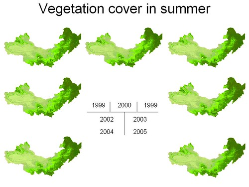 vegetation_cover_in_summer