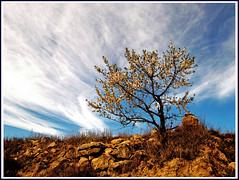 Juegos de nubes photo by inmacor