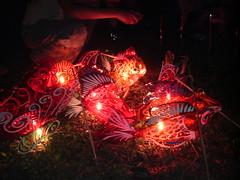 Lanterns at MacRitchie