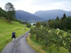 A farm near Ulvik