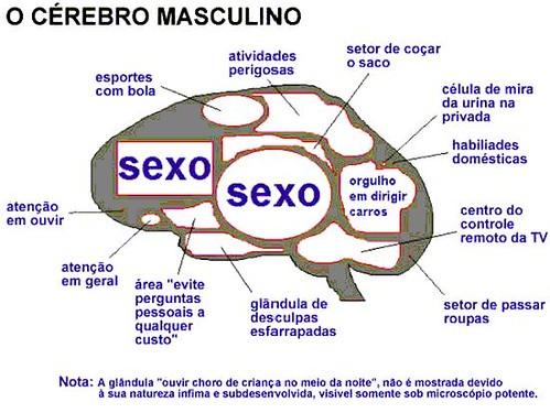 crebrohomem