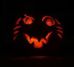 cat-o-lantern pm