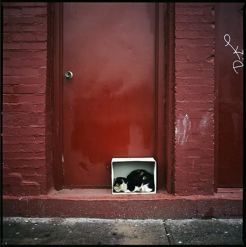 Brooklyn, NY Sept 2006 by Beau