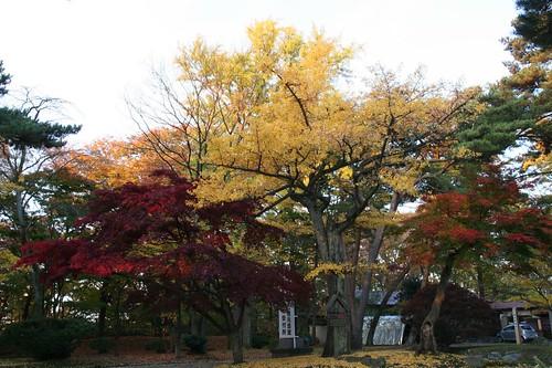 千秋公園八幡秋田神社旁