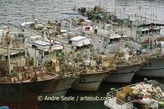 Barcos taiwaneses
