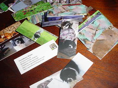 Wonderful, wonderful flickr cards