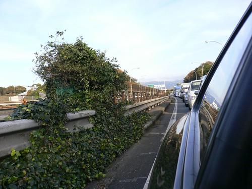 東名高速大渋滞